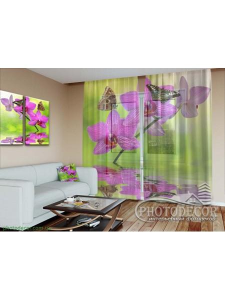 """3D ФотоТюль """"Бабочки на малиновой орхидеи"""""""