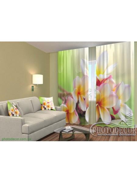 """3D ФотоШторы """"Весенние цветы. Франжипани"""""""