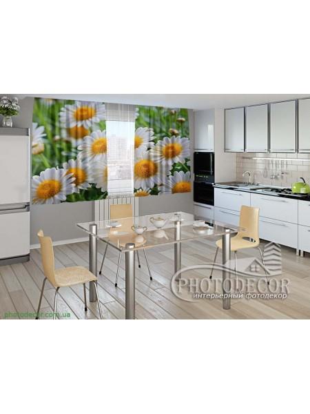 """Фото шторы для кухни """"Белые ромашки"""""""