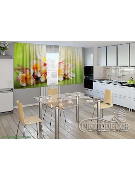 """Фото шторы для кухни """"Весенние цветы. Франжипани"""""""