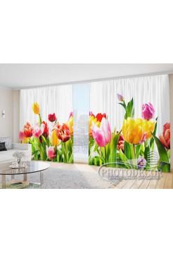 "Фото Шторы  для зала ""Разноцветные тюльпаны 1"""