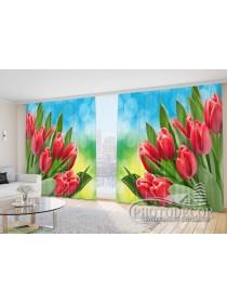 """Фото Шторы  для зала """"Тюльпаны на голубом фоне"""""""